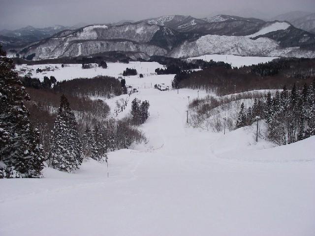 20080218b15.jpg