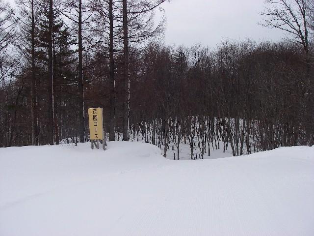 20080218b17.jpg