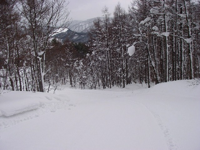 20080218b19.jpg