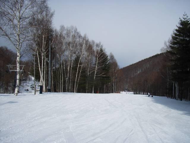2008030107.jpg