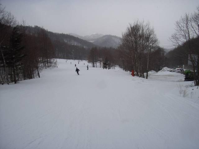 2008030132.jpg