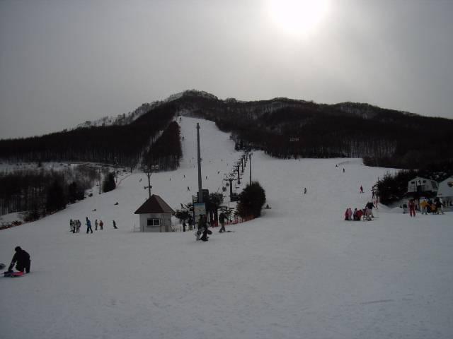 20080302.jpg