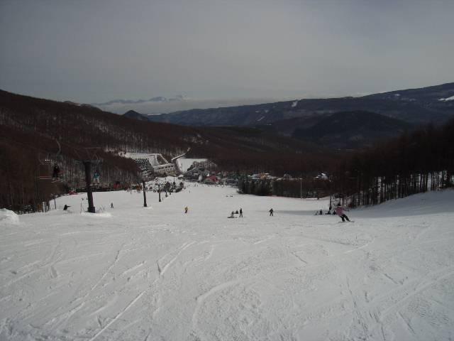 2008030203.jpg