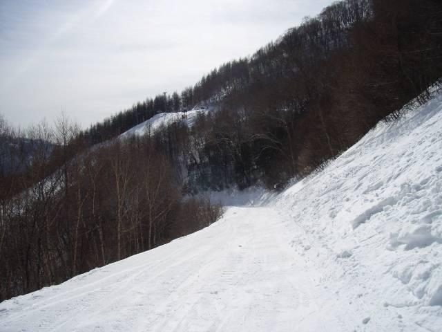 2008030208.jpg