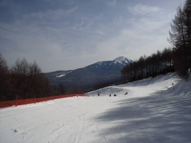 2008030214.jpg