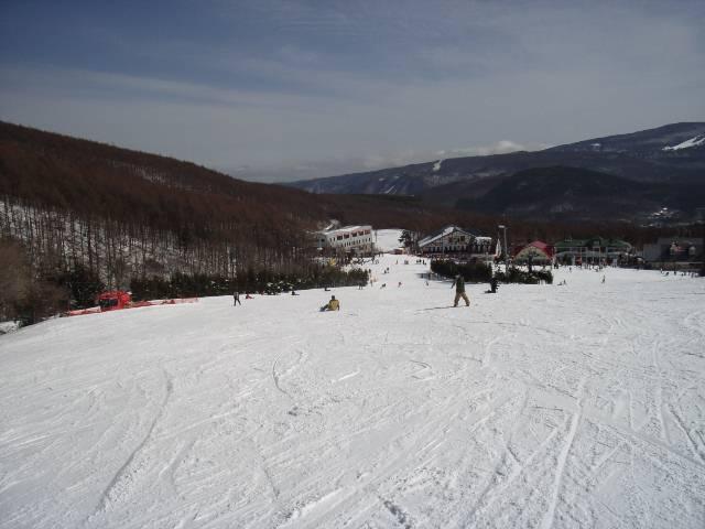 2008030215.jpg