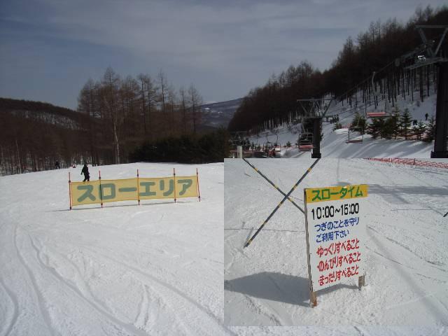 2008030219.jpg