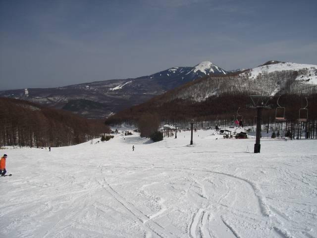 2008030223.jpg