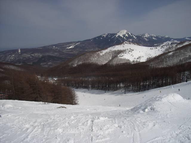 2008030228.jpg