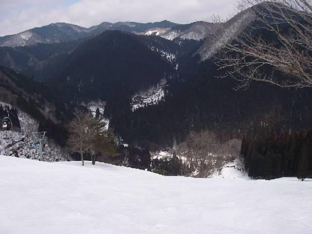 2008030809.jpg