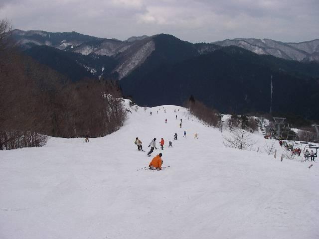 2008030822.jpg