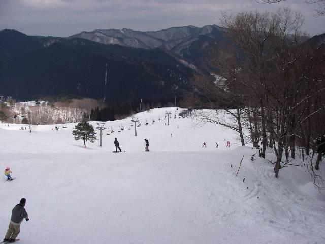 2008030841.jpg