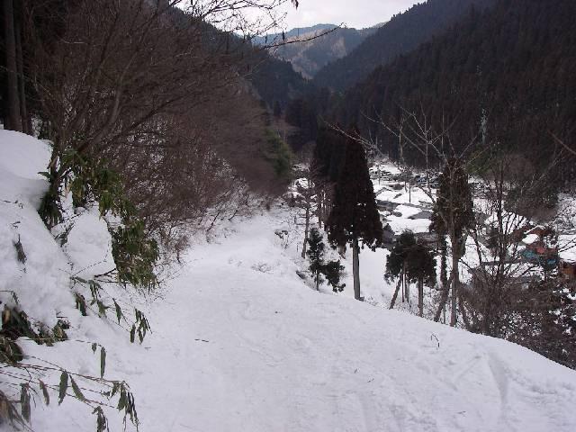2008030856.jpg