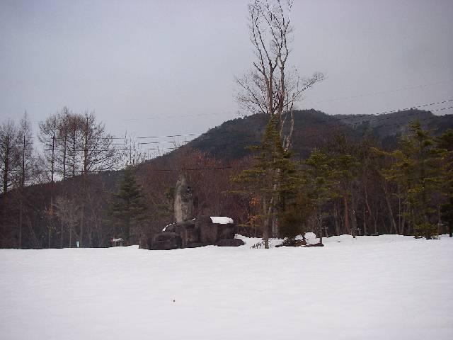 2008031603.jpg