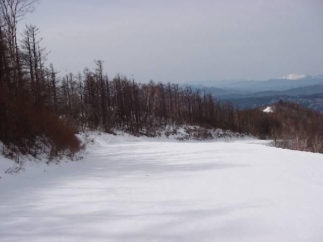 2008032309.jpg