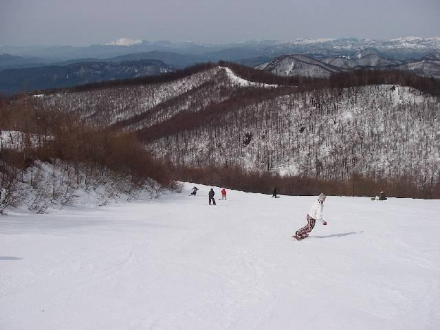 2008032313.jpg