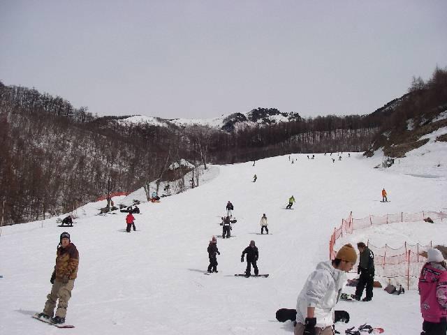 2008032324.jpg