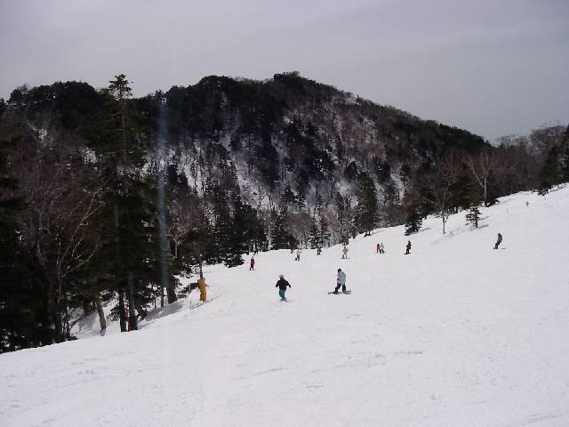 2008032356.jpg