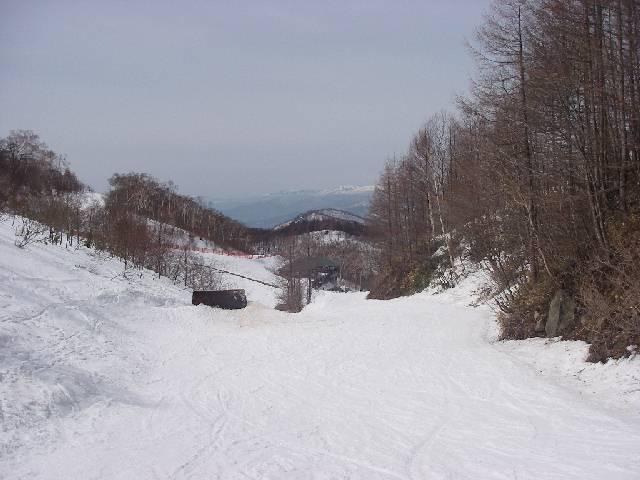 2008032389.jpg