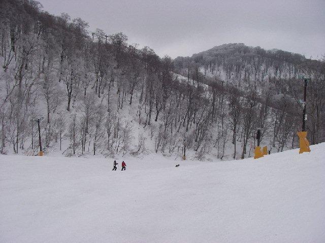 20080329a21.jpg