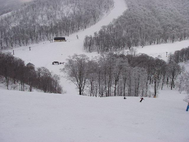 20080329a30.jpg