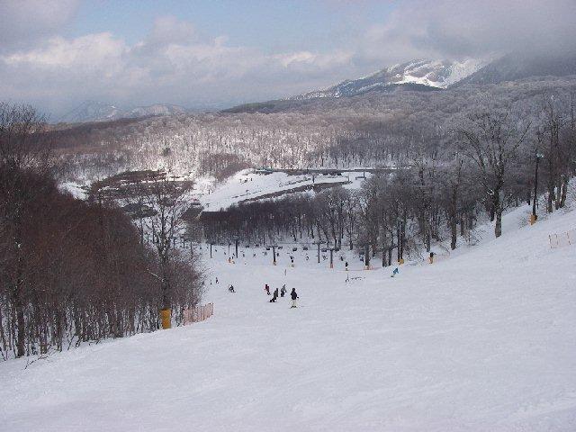 20080329a36.jpg
