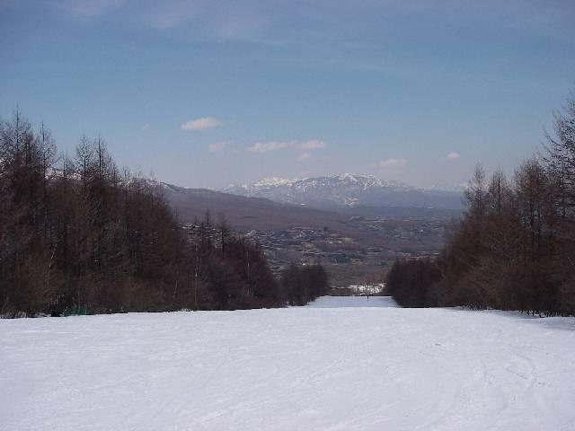 2008040505.jpg