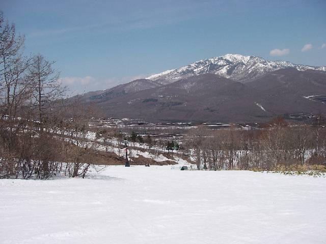 2008040506.jpg