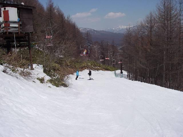 2008040508.jpg
