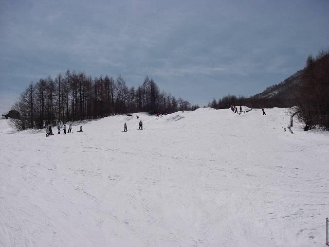 2008040511.jpg