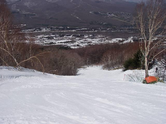 2008040517.jpg