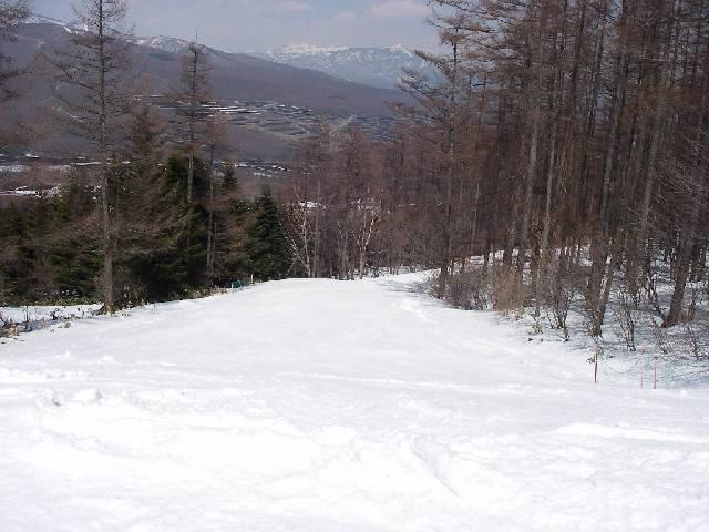 2008040521.jpg