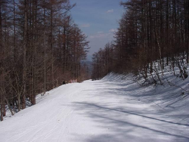 2008040522.jpg