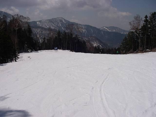 2008042739.jpg
