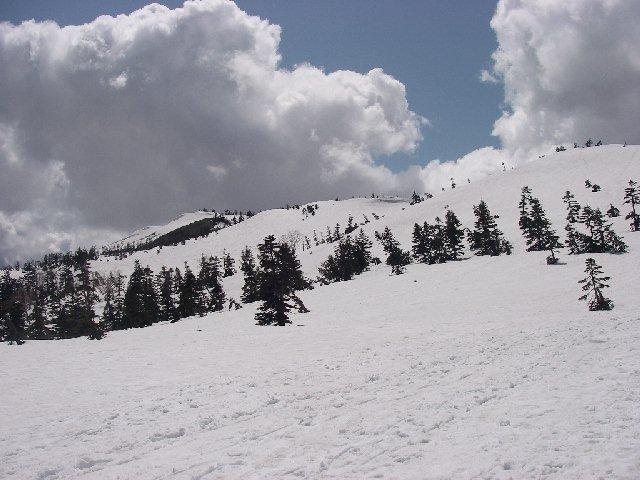 2008050326.jpg