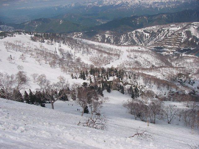 2008050335.jpg