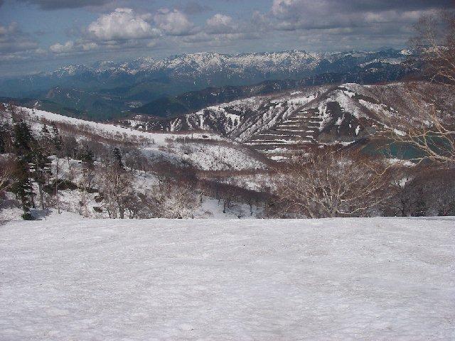 2008050336.jpg