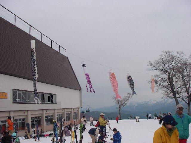 2008050506.jpg