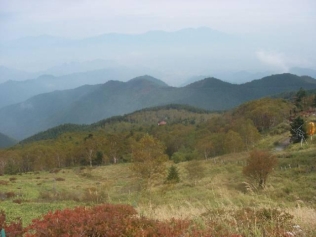 20081005c04.jpg