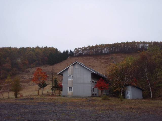 20081026a.jpg