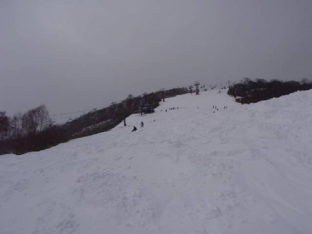 2008112208.jpg