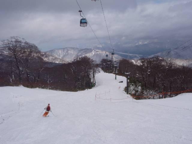 2008112220.jpg