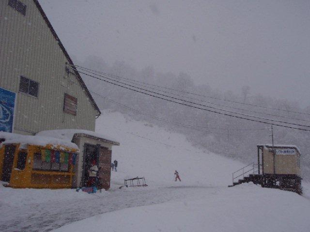 2009113004.jpg