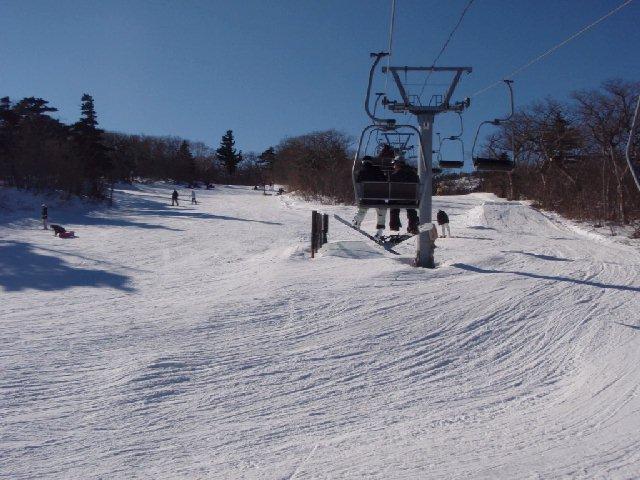 2008122003.jpg