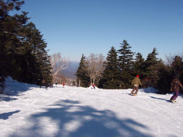 2008122019.jpg