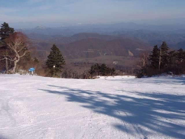 2008122120.jpg