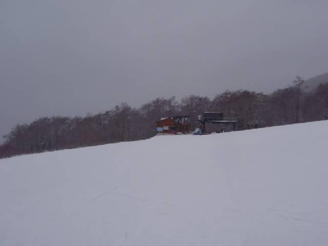 2008122209.jpg