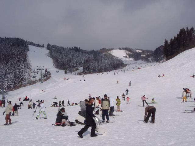 20081228.jpg