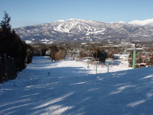 20081229a.jpg