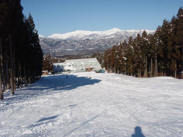 20081229a16.jpg